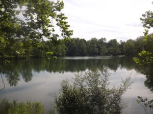 Sycamore State Park